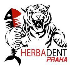 Ostraha PLAY – OFF Florbal Hebadent – Bohemians